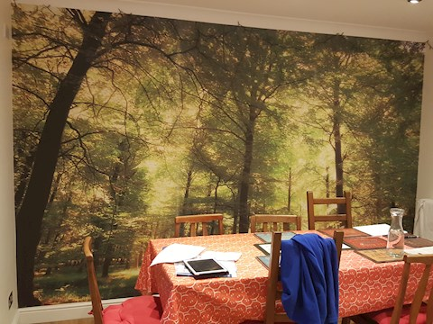 Feature Wall Mural, Cambridge (After)